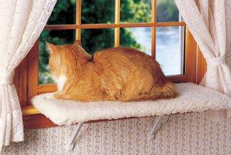 Double Kitty Shelf