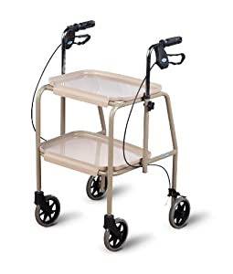 Homecraft Trolley Walker