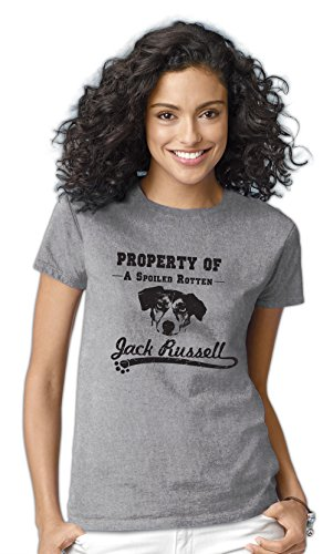 Women's Property of A Spoiled Rotten Jack Russell (Terrier) Dog T-Shirt Medium Ash Grey (Jack Russle compare prices)