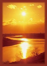 ブロッコリー ハイブリッドスリーブ 「いつか見た夕焼け」