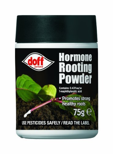 Doff-Hormone-Rooting-Powder-Plant-and-Cuttings-75g-Dibber-Pack-Rootings-Power