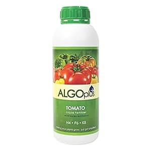 Algoflash Tomato