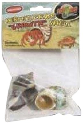 Zoo-Med-Hermit-Crab-Growth-Shell-Medium-2-Pack