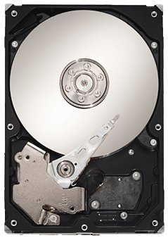 Seagate Barracuda 7200.12 SATA 1TB: ST31000528AS (ST31000528AS)