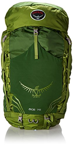 Osprey Youth Ace 75 Backpack, Ivy Green, One Size (Osprey Backpack Ace compare prices)