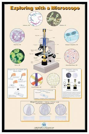 Exploring With A Microscope Poster
