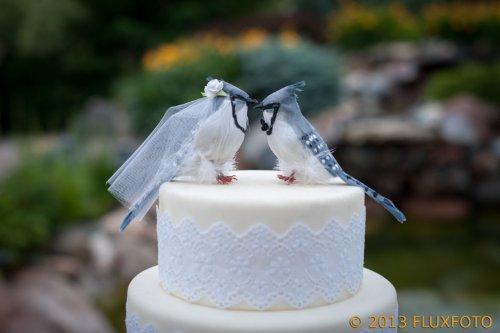 """Bleu Jay gâteau: """"marié et mariée"""" Love Oiseaux pour gâteau de mariage-Anniversaire/Groom de gâteau"""