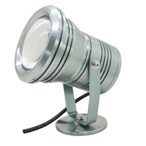 Deya® 20W Dc12V Silver Led Underwater Flood Light For Landscape Fountain Pond Pool, White
