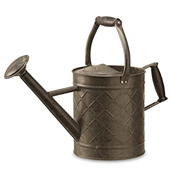 "National Tree Garden Accents Metal Watering Can, 12"", Antique Black"
