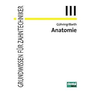 Anatomie (Grundwissen für Zahntechniker)