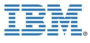 IBM-IMSourcing 43X0802 300 GB 3.5