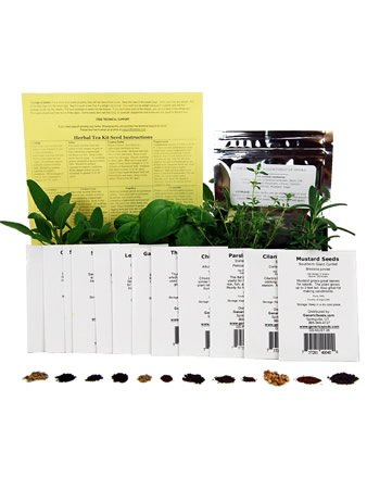 Assortment of 12 Culinary Herb Garden Seeds: Parsley, Thyme, Cilantro, Basil, Dill, Oregano, Marjoram & More
