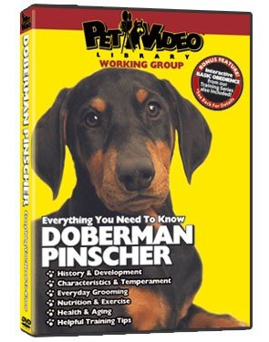 Doberman Pinscher Dvd - Everything You Should Know About Your Dog