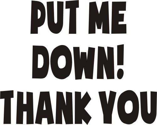 Put-me-down-thank-you-Funny-Joke-Novelty-transfer-Sticker-75x55-printed-in-black-for-Toilet-Seat-Bathroom-or-joke-for-car-boot