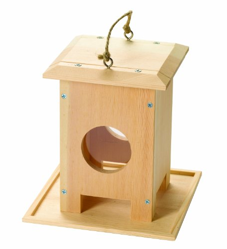 red-tool-box-bird-feeder