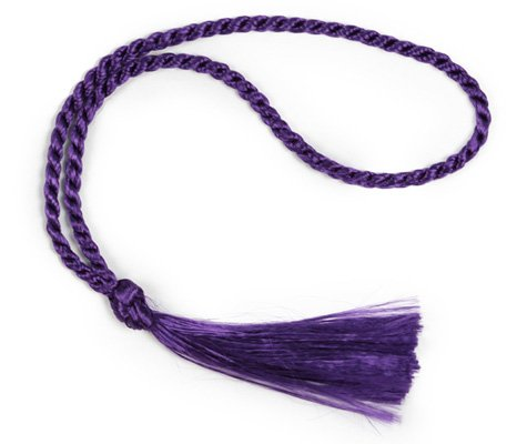 Discover Bargain 100 Floss Bookmark Tassels (Purple)