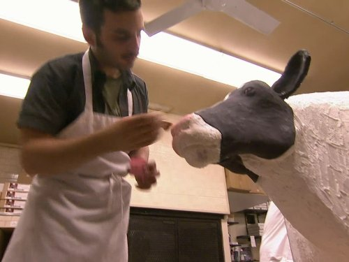 prize-cow-pop-tarts-a-predicament