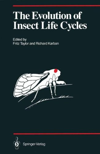 The Evolution of Insect Life Cycles (Proceedings in Life Sciences)