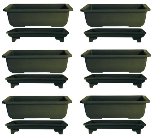 10 inch Bonsai Pots with Trays | 6 pack from joebonsai - Buy 10 inch Bonsai Pots with Trays | 6 pack from joebonsai - Purchase 10 inch Bonsai Pots with Trays | 6 pack from joebonsai (joebonsai, Home & Garden,Categories,Patio Lawn & Garden,Plants & Planting,Outdoor Plants)