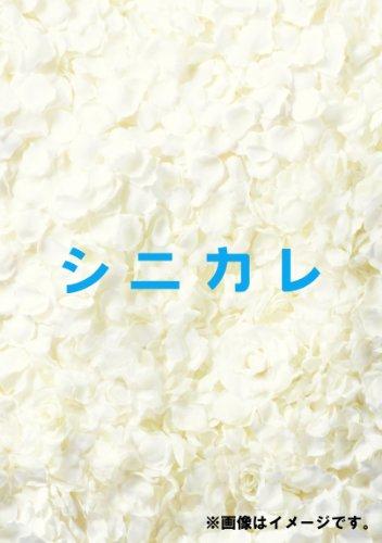 シニカレ完全版 ブルーレイBOX(仮) [Blu-ray]