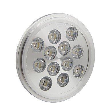 Rayshop - Dimmable Ar111 E27 12W 1200Lm 3000K Warm White Led Spot Lamp Light(Ac220-260V)