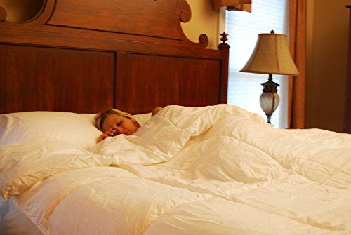 clara clark white goose down alternative comforter duvet. Black Bedroom Furniture Sets. Home Design Ideas