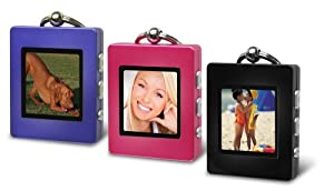 The Sharper Image Digital Photo Keychain