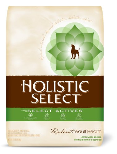 Holistic Select Radiant Adult Health, Lamb Meal Recipe Dry Dog Food, 15-Pound Bag