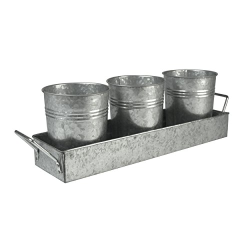 Oasis Picnic Caddy & Planter Set, Galvanized Wrapped W/Color Insert