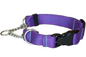 Canine Equipment Technika 1-Inch Quick Release Martingale Dog Collar, Medium, Purple