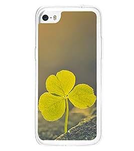 Leaf 2D Hard Polycarbonate Designer Back Case Cover for Apple iPhone 5C