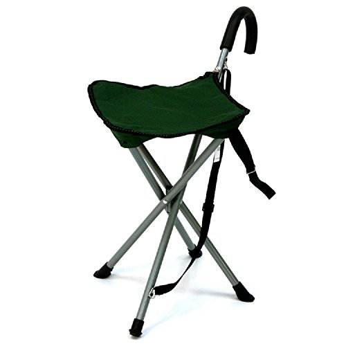 Get Portable Walking Chair Cane Stool From The Stadium