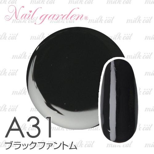 ブラックファントム 4g ジェルネイル LED対応 スターターキットと一緒買いがオススメ