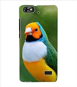 ColourCraft Cute Bird Design Back Case Cover for HUAWEI HONOR 4C