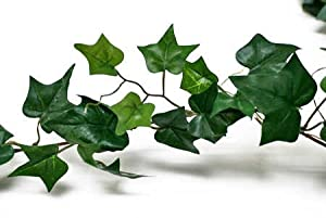 6 Foot Artificial Silk English Ivy Garland
