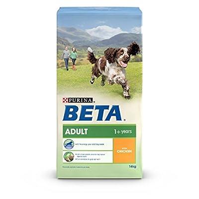 BETA Adult with Lamb & Rice