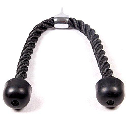 HLC トライセップロープ 腹筋運動