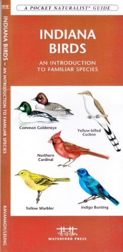 Indiana Birds: An Introduction to Familiar Species (State Nature Guides)