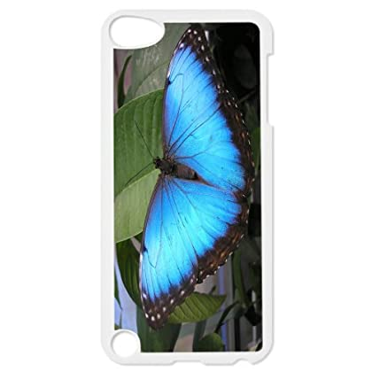 Rikki KnightTM Bright Blue Butterfly on Green Design iPod Touch Black 5th Generation Hard Shell Case coupons 2015