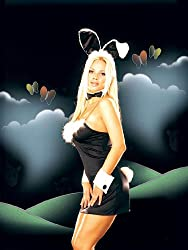 Sexy Pin-Up Easter Bunny Costume Fancy Dress Outfit. Hen Night by Spooky's