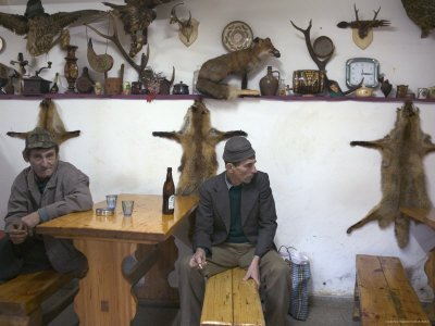 Men Having a Beer in Local Hunting Bar Decorated with Stuffed Animals, Transylvania Photographic Poster Print by Gavin Quirke, 18x24