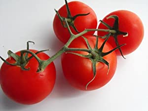Fourth of July Tomato 4 Plants - Ripens in 44 days!