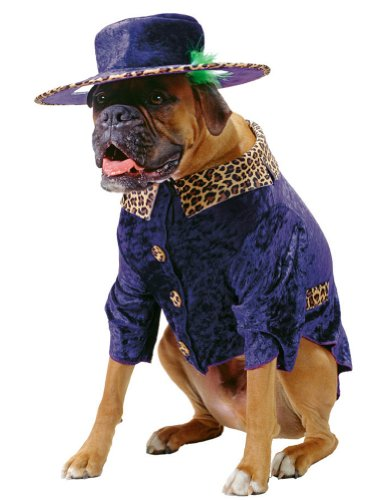 Halloween Costumes Item - Pet Costume Big Daddy