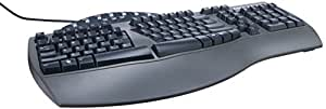 Fellowes Microban Split Design Wired Keyboard, Dark Gray (98915)