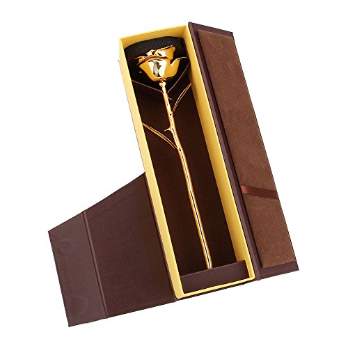 ZJchao Premium Long Stem Gold Dipped Real Rose Flower, Mothers Day Gift, Birthday, Anniversary Gift to Her