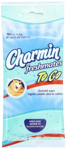 Charmin To Go Flushable Wipes, 10-Count (Pack of 24) (Flushable Adult Wet Wipes compare prices)