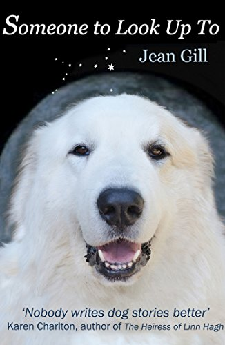 Someone To Look Up To by Jean Gill ebook deal