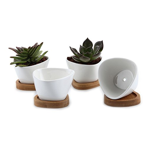 T4U 3 Inch Ceramic White Misalignment Traiangle Design Sucuulent Plant Pot/Cactus Plant Pot With Bamboo Tray Package 1 Pack of 4 (Square Garden Pots compare prices)
