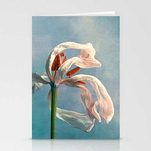 fotokunst-grusskarte-fleeting