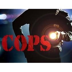 Cops Season 24